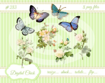 Digital clipart, instant download, Vintage Flower and Butterfly Images, white roses, blue butterflies, prairie roses--8 PNG files   283