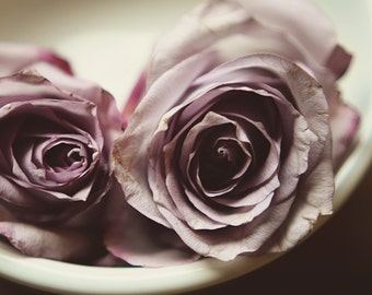 lavender floral art, pastel decor, floral nursery art, romantic art, purple and white, rose art, girls decor, light purple decor,