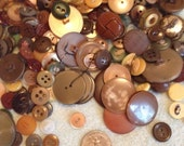 Forest Assorted Vintage Button Lot