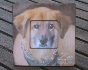 """Pet Memorial Frame, Personalized Pet Memorial Picture Frame, Custom Cat Frame, Pet Collage Picture Frame 8"""" x 8"""", Unique Pet Gift"""
