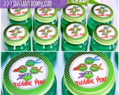 INSTANT DOWNLOAD - Ninja Turtle Favor Tags, TMNT Stickers
