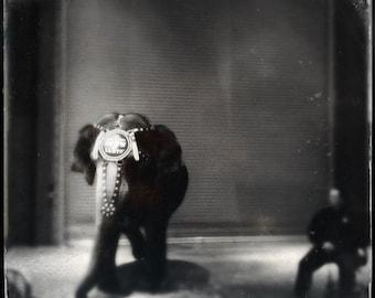 Circus Photography | Black + White Elephant Photo | Modern, Minimalist, Retro, Noir, Art Deco, Rustic, Dreamy | Carol the Elephant