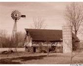 19. Forgotten Farm