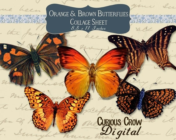 Orange and Brown Butterflies Digital Collage Sheet -  INSTANT Printable Download