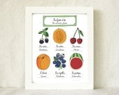 Kitchen Art Summer Fruits 8x10 giclee art print home decor French Retro Kitchen Food nature garden botanical chart Mothers Day
