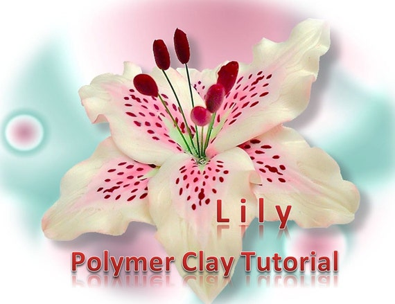 pictures of lily pdf