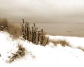 Winter snow beach scene photograph sepia fine art photography fpoe home decor