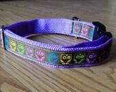 1 inch wide adjustable side release dog collar - colorful owls on brown - lavender webbing - size medium