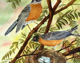 Spring robins - 8 x 10 watercolor giclee print
