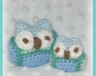 Teeny and Tiny the Owls Crochet Pattern