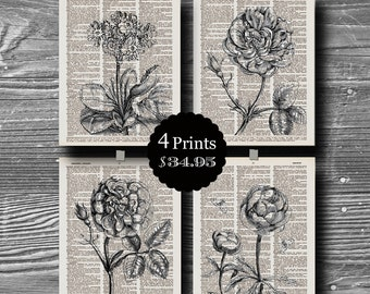 dictionary book page art print flower floral botanical poster set butterfly home decor