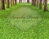 Two In One / 5ft x 10ft Vinyl Photography Backdrop / Cherry Tree Row and Green Grass