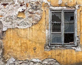 NEW ITEM 6ft x 5ft Vinyl Photography Backdrop  / Yellow Vintage Window