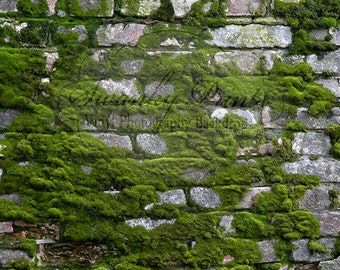 NEW ITEM 5ft x 5ft Vinyl Photography Backdrop / Moss Rock Wall