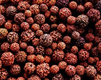 400 Gram Mixed Bag Loose Rudraksha Beads, Rudraksha Seeds, Prayer Beads, Mixed Rudraksha Beads NAT-096