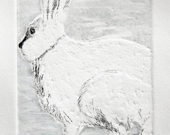Snowshoe Hare Winter Attire is a 2 plate etching with aquatint and embossing and hand coloring.