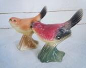 Vintage Bird Figurines - Pair of Bird Figurines - Vintage 1950s - Hand Painted Birds
