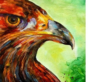 Golden Eagle, limited edition print 7.5 x 10