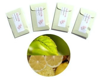 Sage Citrus Type Scented Sachets Set of Mini Sachet Bags for Him Aromatic Lemon Herbs Home Fragrance Event Favors Seed Packet Male Gifts