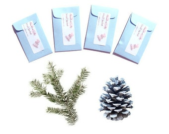 Sachets Winter Wonderland Rustic Wedding Favor Winter Personalized Gift Tags, Place Cards Names Included Blue or Color Choice Pine Scented