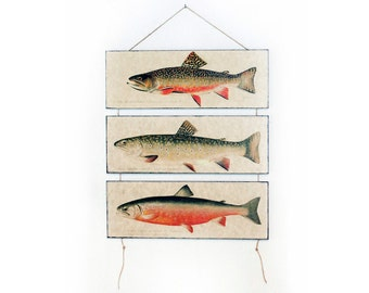 "Retro Wood Wall Art 14x12"" 36x30cm, Fish Educational Board, Trout Natural History, Wall Hanger, Art Deco Room Decor, Nautical, Nursery room"