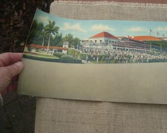 Hialeah Park Race Course, Miami, Florida