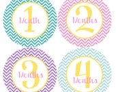 Baby Girl Month by Month Stickers - Girl Baby Monthly Stickers - Pink, Blue and Purple Chevron Month Stickers - Sammy