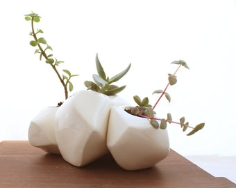 Succulent Rock Trio Planters in White