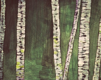 birches, large fine art print, 11'' x 14'' or A3, with epson pigment ink ohn hahnemuehle fine art matte paper