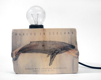 Driftwood lamp. Humpback Whale. Wood lamp. Whale Lamp. Reclaimed wood.