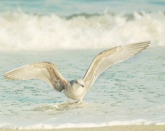 Fearless, Seagull Photograph, Seagull in Surf, Teal Ocean, Fine Art Photo, 8x10, Jersey Shore