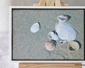 ACEO, ATC, Artist Trading Card, Beach, shells, photograph