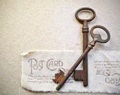 Antique French Keys, Vintage Rustic Skeleton Keys Pair - antiquissimo