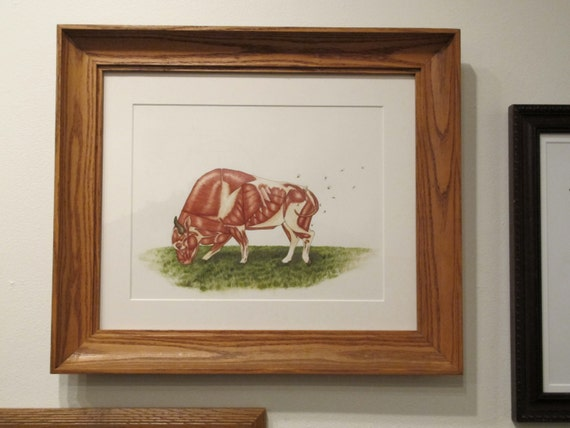 "Bison Anatomy Illustration - Print of Original Art  16.5""x15"" - rustic country watercolor painting and ink"