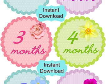 DIY - Flower Monthly Birthday Stickers Plus Just Born, Photo Props-INSTANT DOWNLOAD