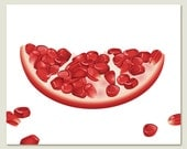 Pomegranate Slice Art Print on White - kitchen, wall art, food, fruit, red, dining room