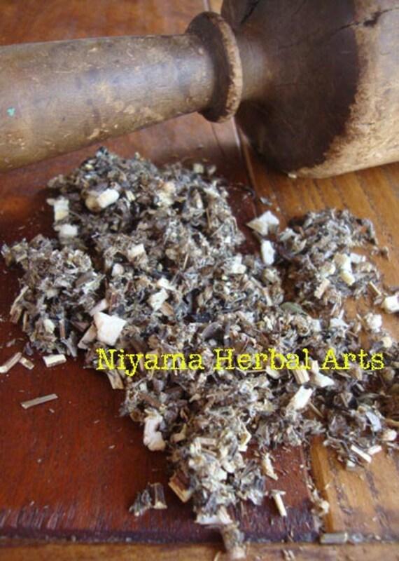 Mugwort, Artemisia Vulgaris, Fresh, Organic, Dried Herbs - 1 oz