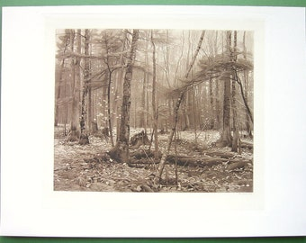 SILENCE in Forest Melancholic Solitude by W. Baker of New York - 1893 Vintage Antique Print