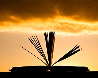Book photography  Open book and Sunset Digital Download Decorating Ideas Old books Library Art Gift Ideas Home Decor