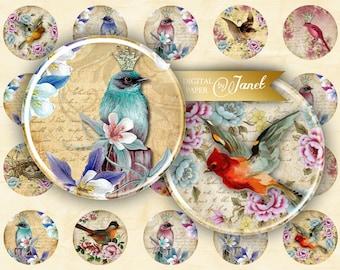 Vintage Birds - circles image - digital collage sheet - 1 x 1 inch - Printable Download