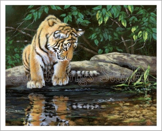 Wildlife Print - Hesitation Giclee Print - Tiger Print - Tiger Cub - Animal Print - Endangered Animal