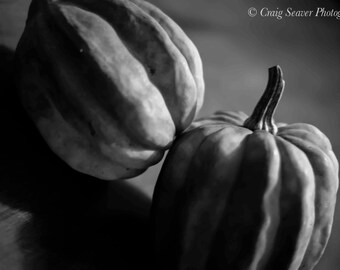 Squash Photo, Kitchen Art, Vegetable Photography, Photograph, Black and White, Kitchen Photograph