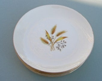 Homer Laughlin China Rhythm Shape Golden Wheat Pattern - Bread and Butter Salad Plates - Set of 6 - 1950s