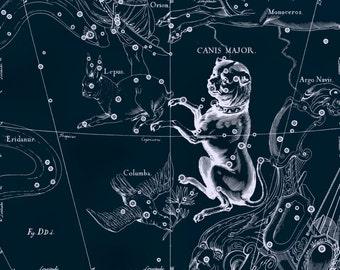 Constellation of Canis Major, Galaxy, Constellation, Constellation print, 31