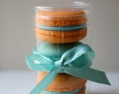 French Macaron Party Wedding Favor Cylinder Clear Box 3 French Macarons - LeBonbonLA