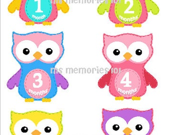 Owl Monthly Infant Stickers