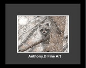 """Original ACEO Painting / Artist PRINT / Birds Eye View""""Racoon Landscape By Anthony D"""