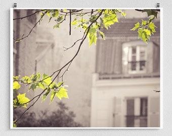 Paris photography - Paris printemps - Paris photo,Art,Fine art photography,Paris decor,wall art,white,green,lime,Fine art prints,Montmartre