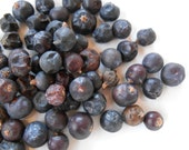 Organic JUNIPER BERRIES Berry - Ancient and World-Wide Folklore - Tea, Incense, Potpourri, Sachet