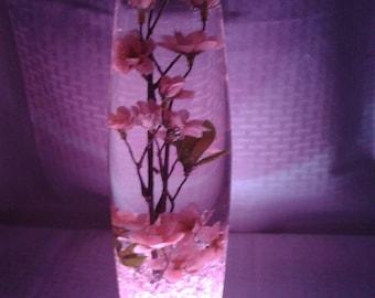 Pink flowers float in water in a slender, delicate vase